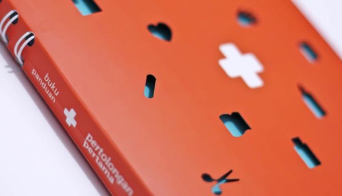 Book First Aid Handbook amp Kit Young Nycas Portfolio
